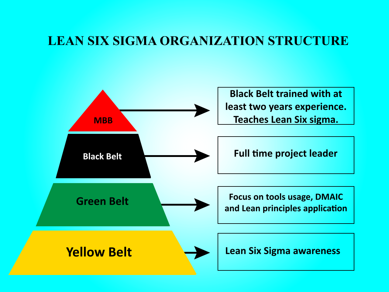 Six Sigma Green Belt Training Programme